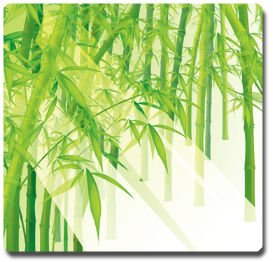 Vign_high-resolution-bamboo-wallpaper-730x700